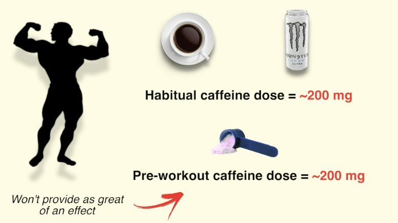 Pre-Workout Supplements: How To Best Use Them To Enhance Growth ...