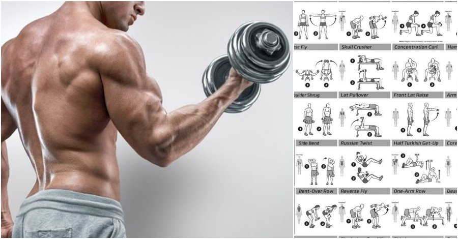 Biceps Workout That Will Have You Bursting Through Your Sleeves - GymGuider.com