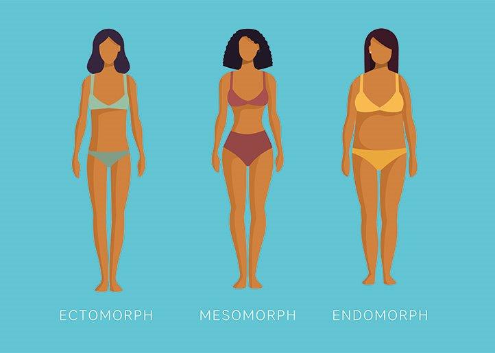 """Are You an Ectomorph, Mesomorph, or Endomorph?""的图片搜索结果"