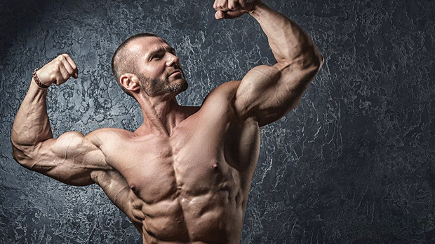 The Complete Guide to Bulking and Cutting   T Nation