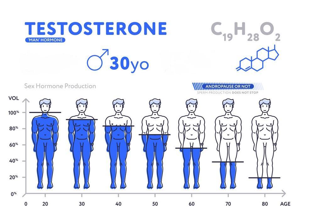 """Ways to Boost Testosterone""的图片搜索结果"