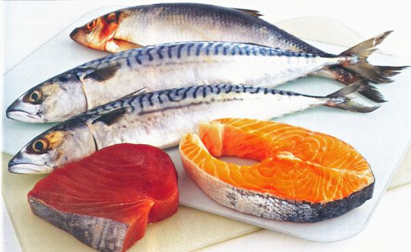 """""""Tuna and Other Fish""""的图片搜索结果"""