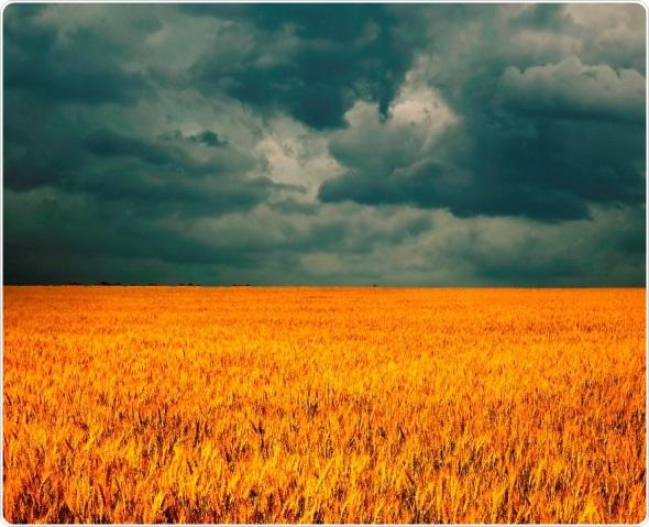 Fibromyalgia and Weather/Seasonal Changes