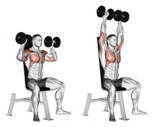 How To Get Bigger, Broader Shoulders | Pro Trainer