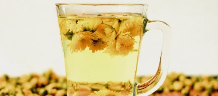 Chrysanthemum Tea Benefits & Side Effects | Tea-and-Coffee.com
