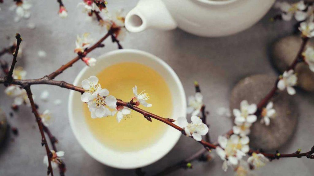 10 Impressive Benefits of White Tea